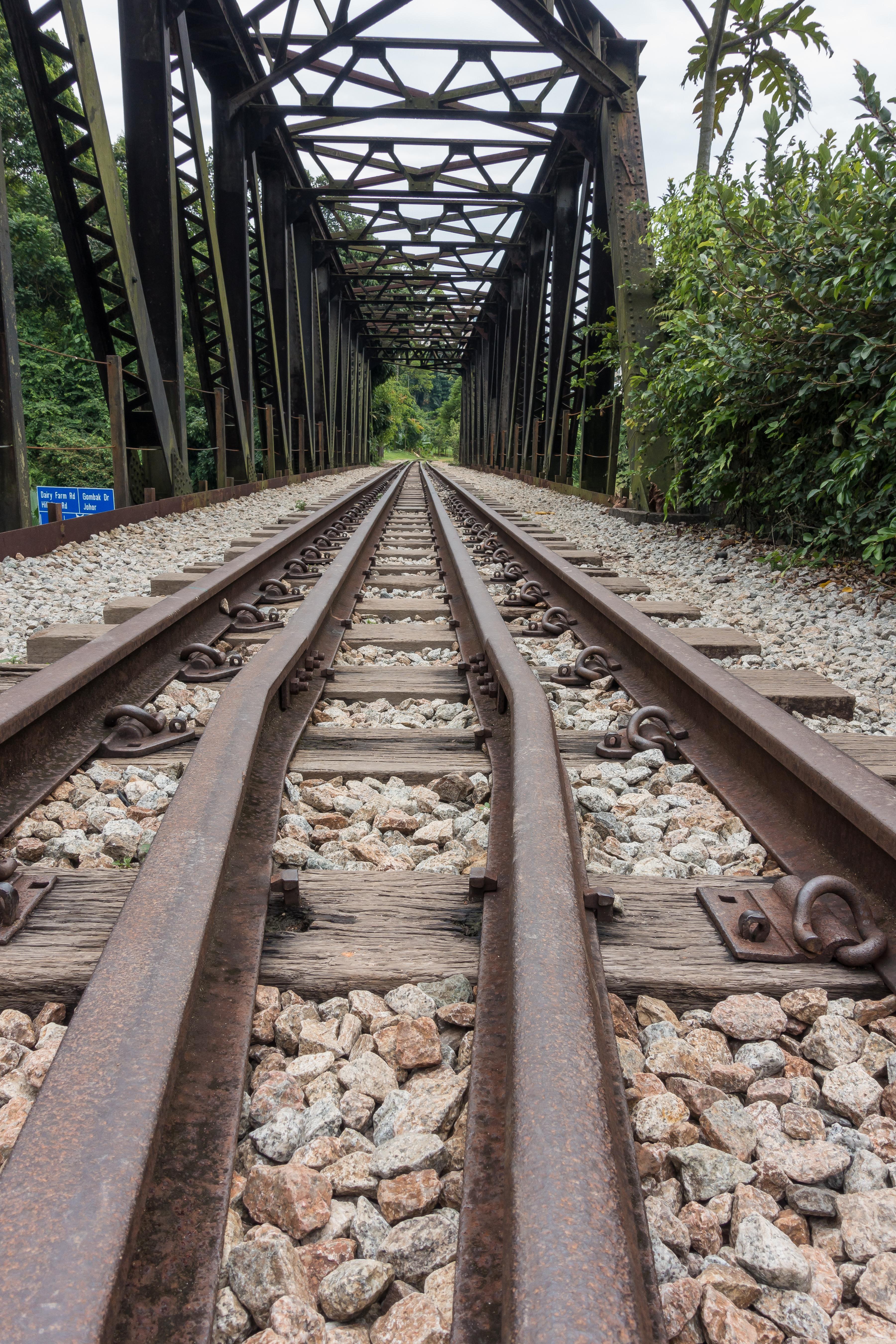 Green Corridor (Rail Corridor) walk