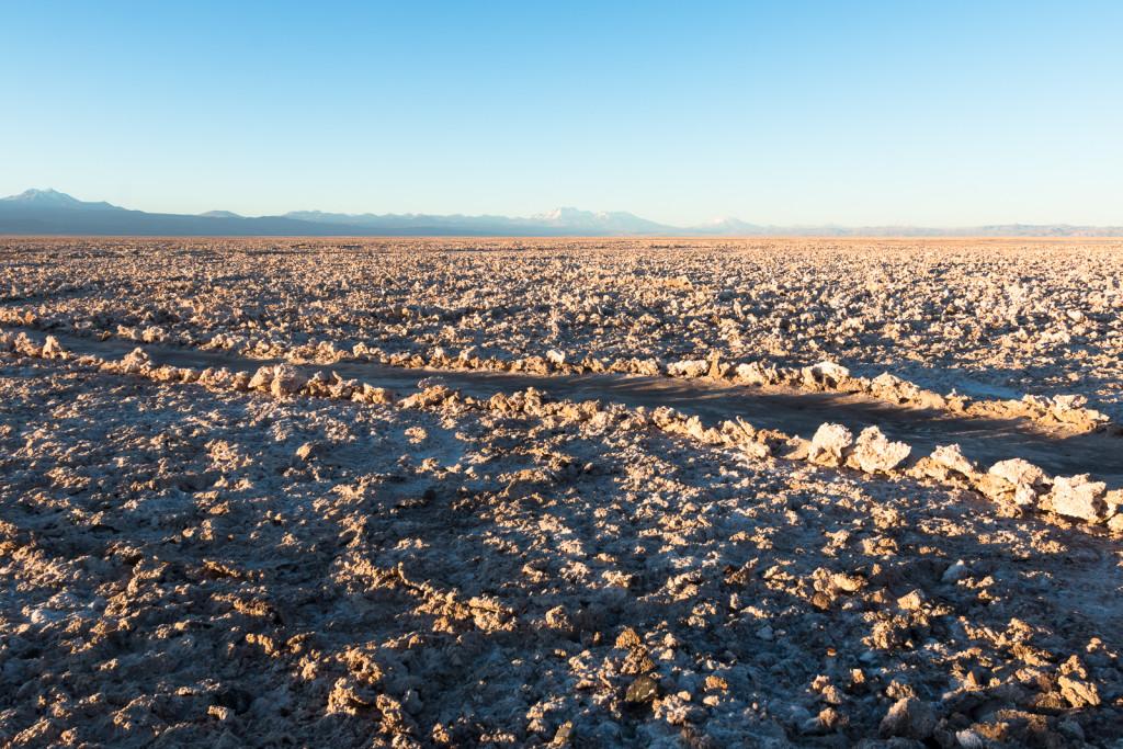 Laguna Chaxa salt flat, Lagunas Altiplanicas tour