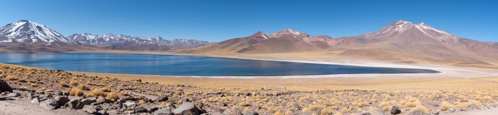 Laguna Miscanti in the Atacama desert