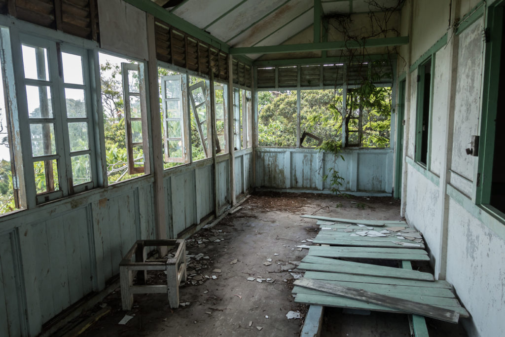 Edgecumbe abandoned home