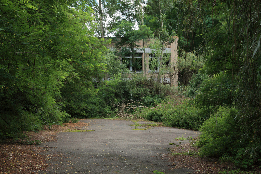 Abandoned school, Pripyat