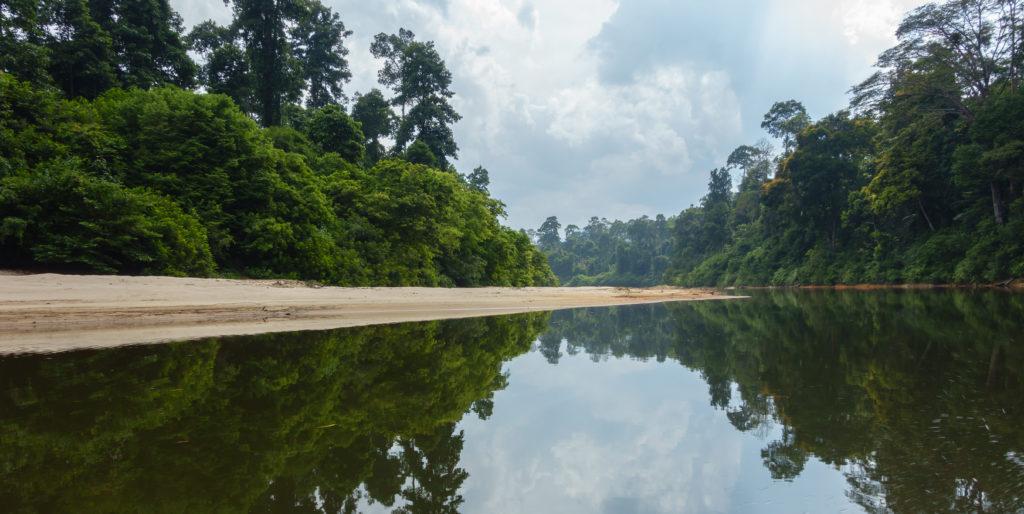 Endau Rompin river