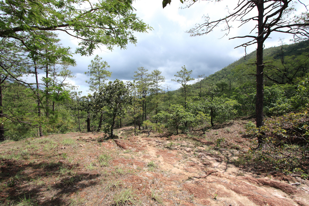 Hiking in Perquin