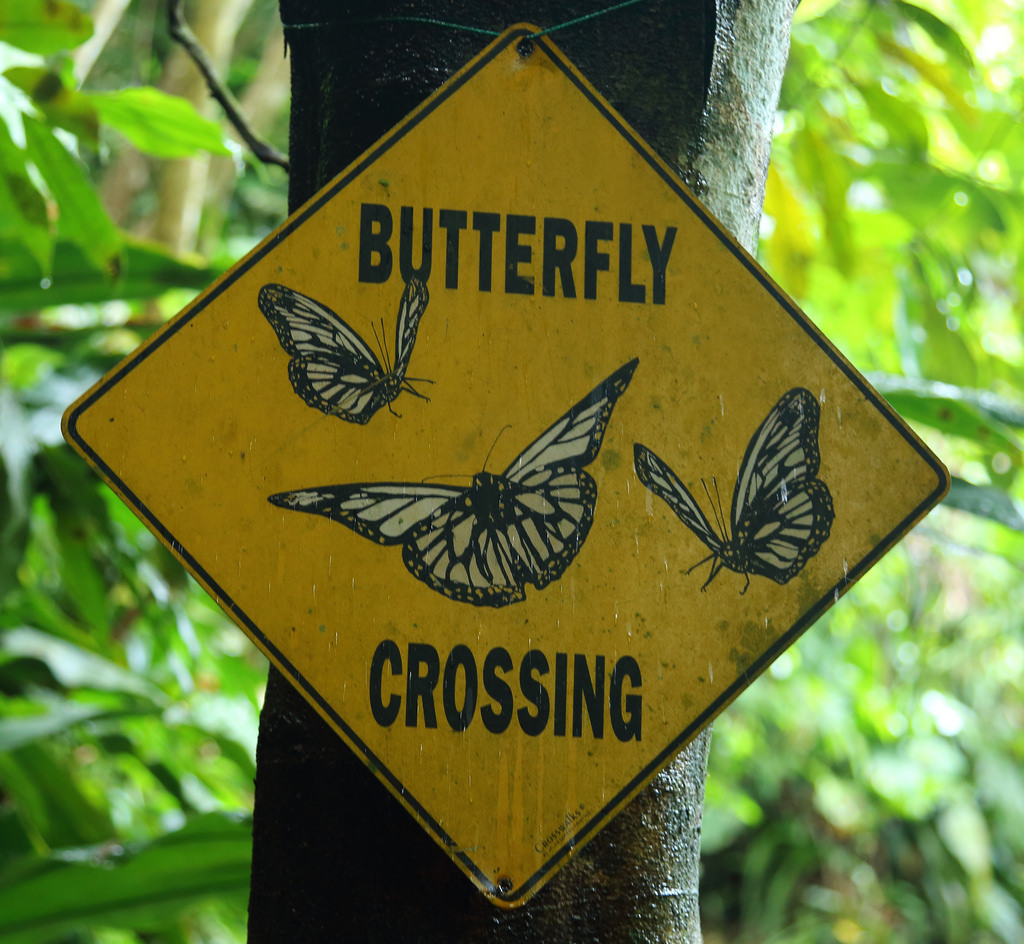 Butterfly crossing sign, Manuel Antonio Butterfly Garden