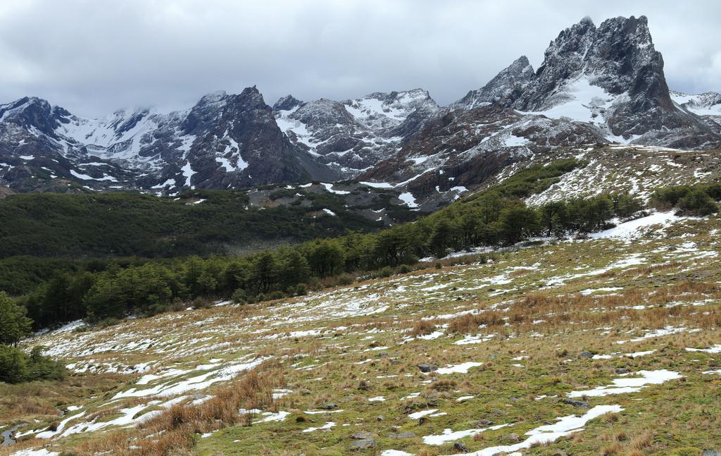 Camping near Monte Bettinello