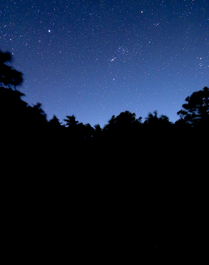 Stars at night in Montecristo National Park