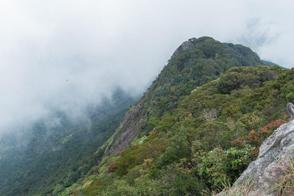 Mount Ophir summit
