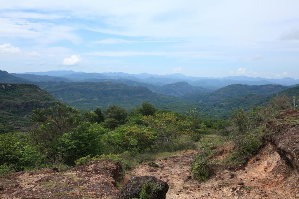 Rio Sapo landscape