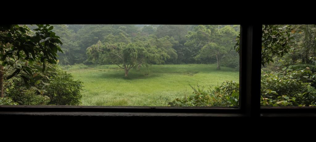 Taman Negara, Tahan hide