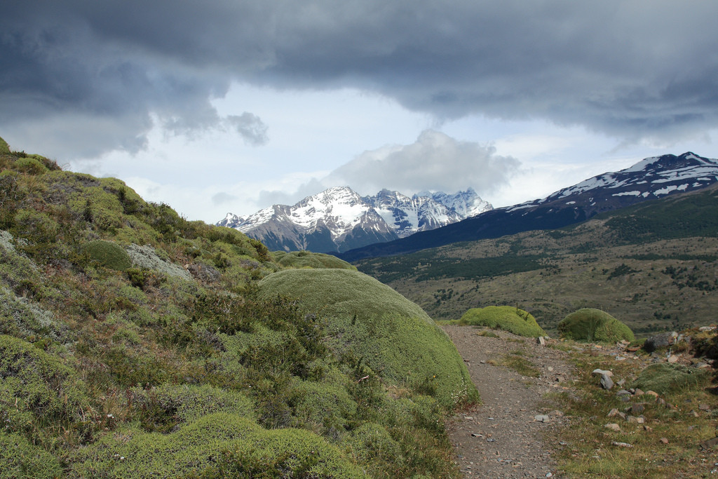 Path towards Dickson, Torres del Paine