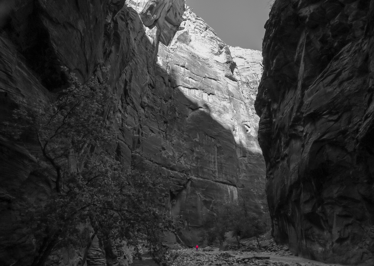 Hiker and cliffs, Virgin Narrows