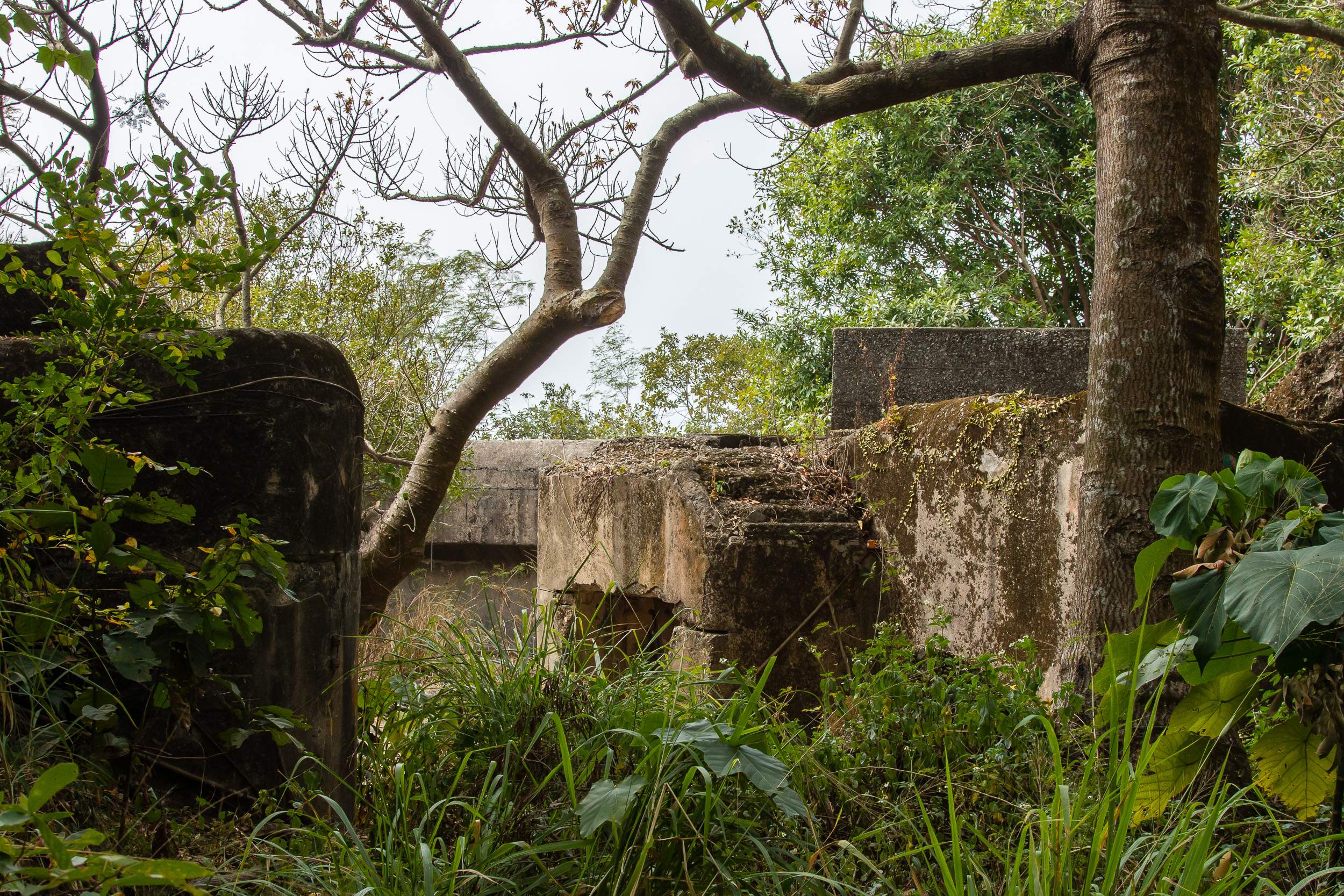 Mount Davis WW2 battery ruins, Hong Kong