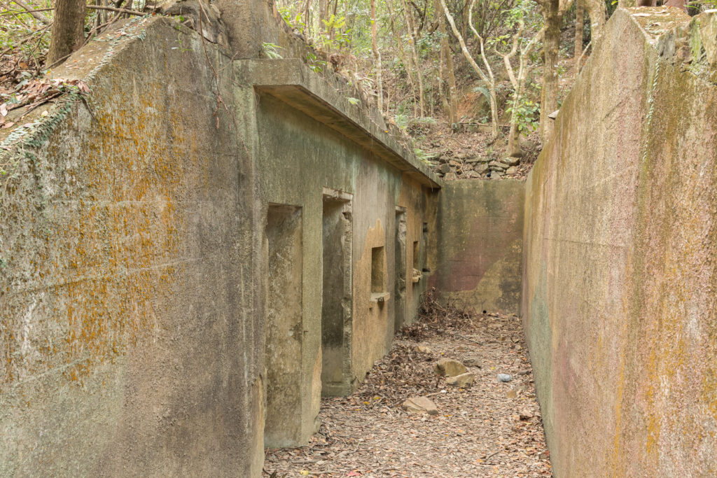 Pinewood Battery, Hong Kong