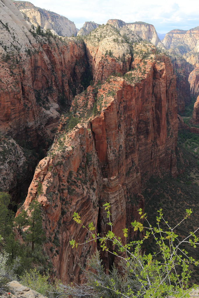 Hike Angels Landing in Zion National Park - US on san francisco us map, lake mead us map, new york city us map, salt lake city us map, lake powell us map, san diego us map, phoenix us map, washington us map, arizona us map, white mountains us map, santa fe us map, palm springs us map, antelope canyon us map, utah us map, glen canyon us map, colorado us map, canyon de chelly us map, mojave desert us map, richmond us map, painted desert us map,