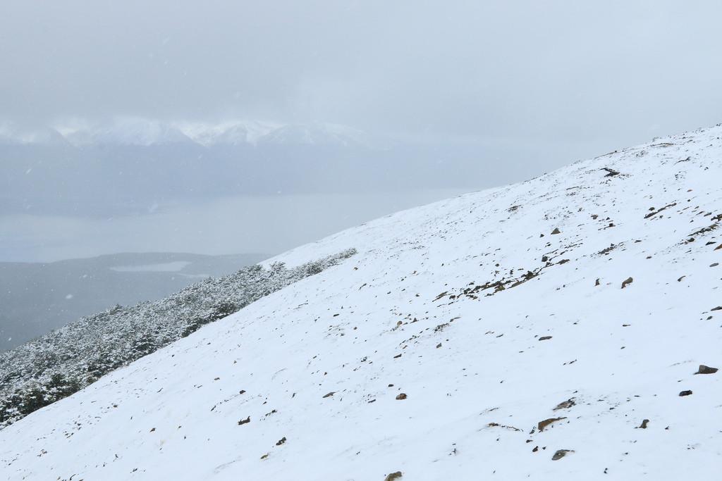 Cerro Bandera on Isla Navarino