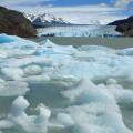 Icebergs in Lago Grey