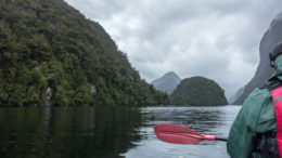 Kayaking in Doubtful Sound