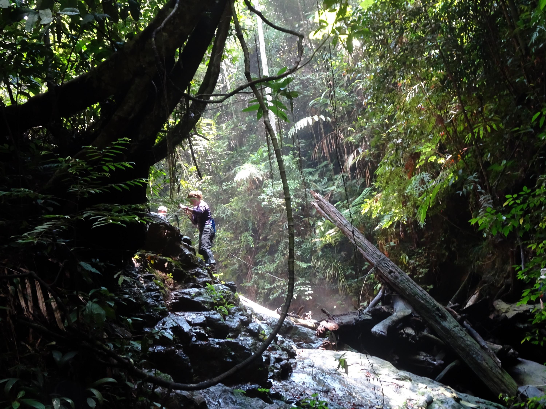 Top 5 outdoors activities in Johor, Malaysia