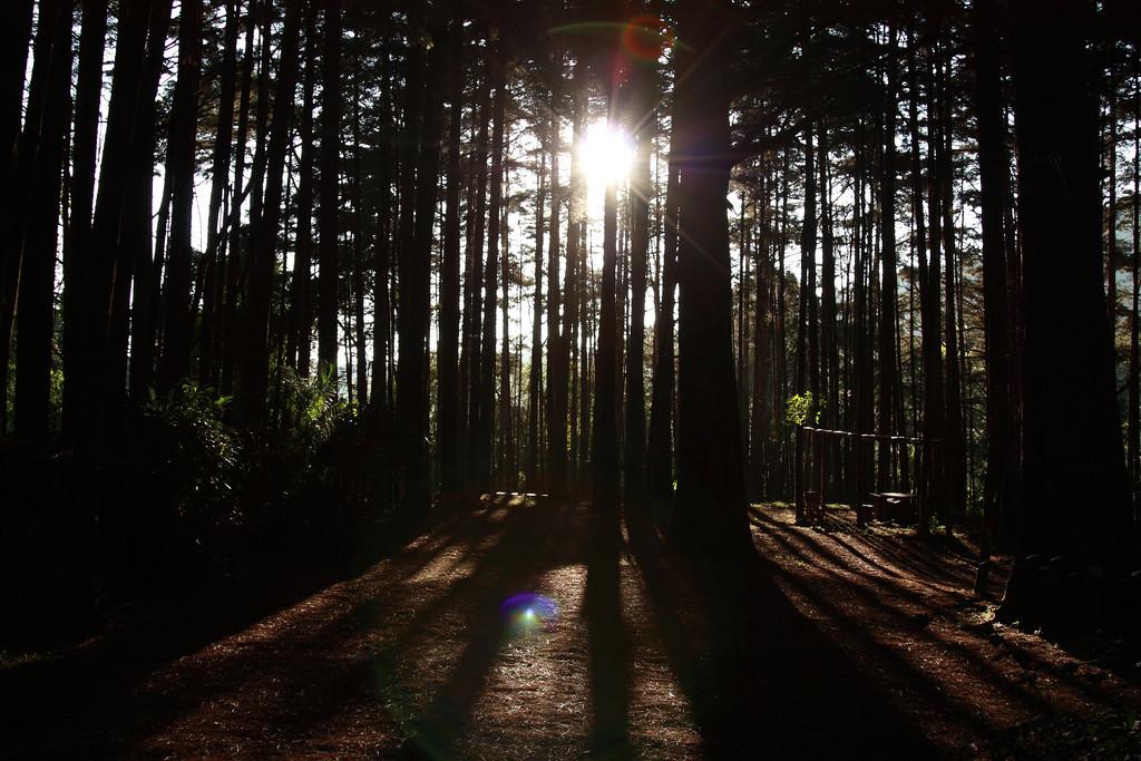 Campsite in Montecristo National Park