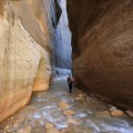 Hiker wades in Narrows